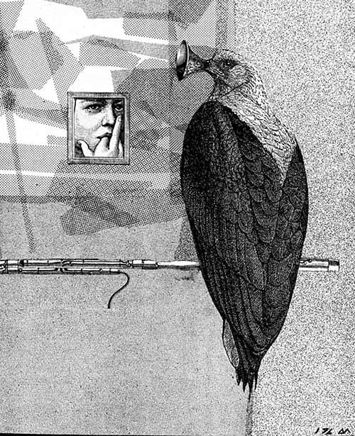 Schnabel-pouet-pouet - Collage - Denis Meyer